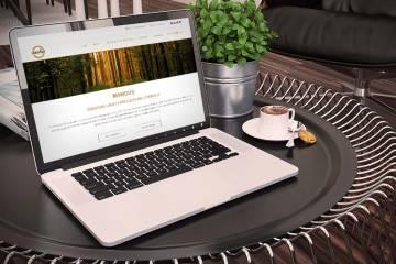 Мы завершили разработку сайта предприятия «Mawood»